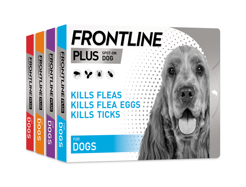 FRONTLINE Plus for dogs pack shot group