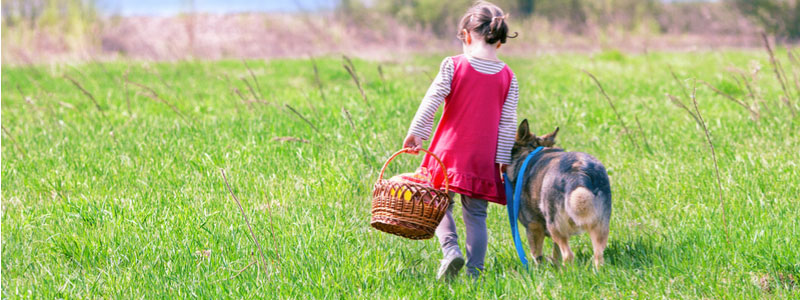 Young girl carrying picnic basket with dog walking beside her