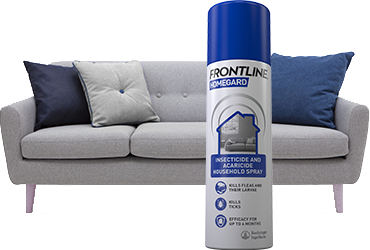 Frontline Homegard flea spray
