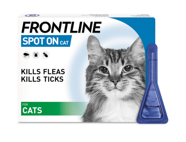 FRONTLINE Spot On flea treatment for cats pack shot