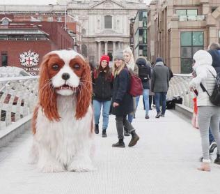 FRONTLINE super-sized spaniel Titch on Millennium Bridge in London
